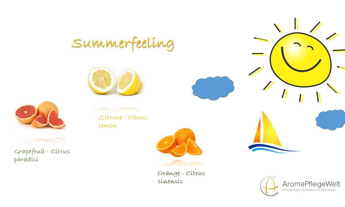Online-Seminar: Summerfeeling-Entspannt durch die heißen Sommertage